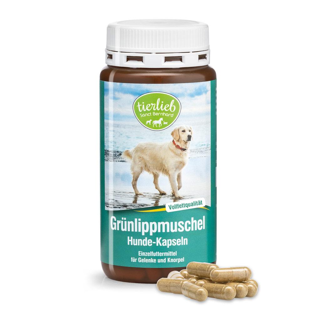 nahrungsergänzung hund gelenke